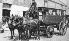 ¿Cuáles fueron los primeros medios de transporte?